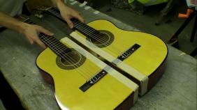 Double Neck Guitar Monkey Nut Maraca
